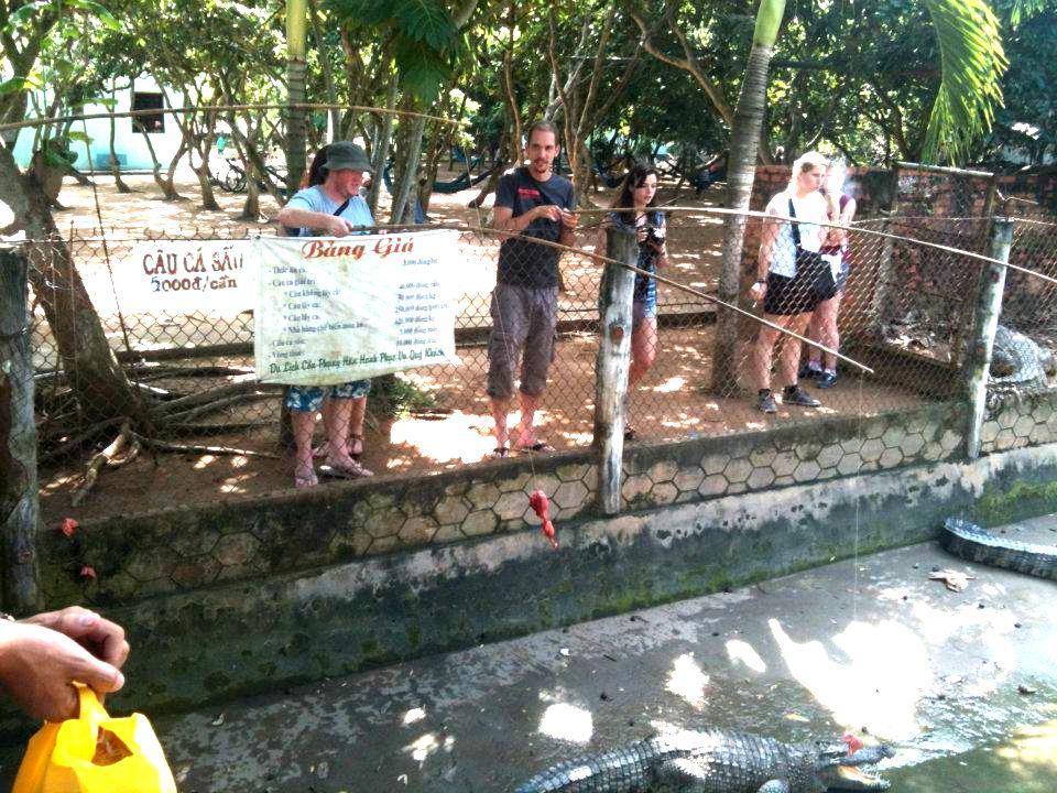 湄公河之旅,可付VND2,000一塊肉餵鱷魚,圖中友人花了幾千盾,玩了鱷魚很久。