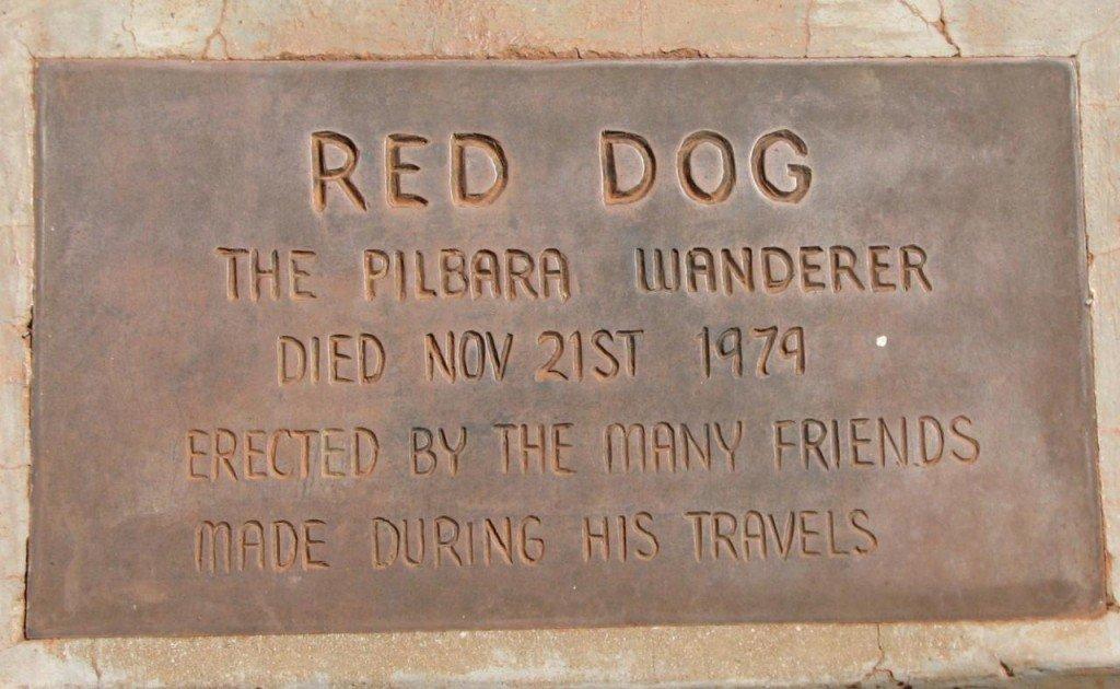 紅狗死後葬在Dampier與Karratha之間,當地特別設了一尊銅象去紀念這隻傳奇狗。