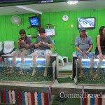 【遊記】泰Hea遊清邁‧另類按摩魚足療Fish Massage