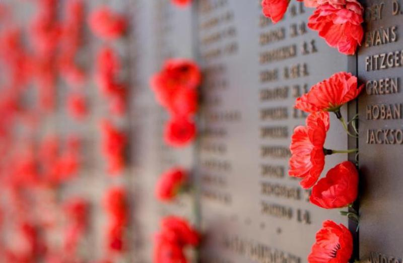 虞美人花成為紀念第一次世界大戰以來為國捐軀將士的象徵。