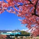 【日本伊豆】出發前‧交通及天氣2/3