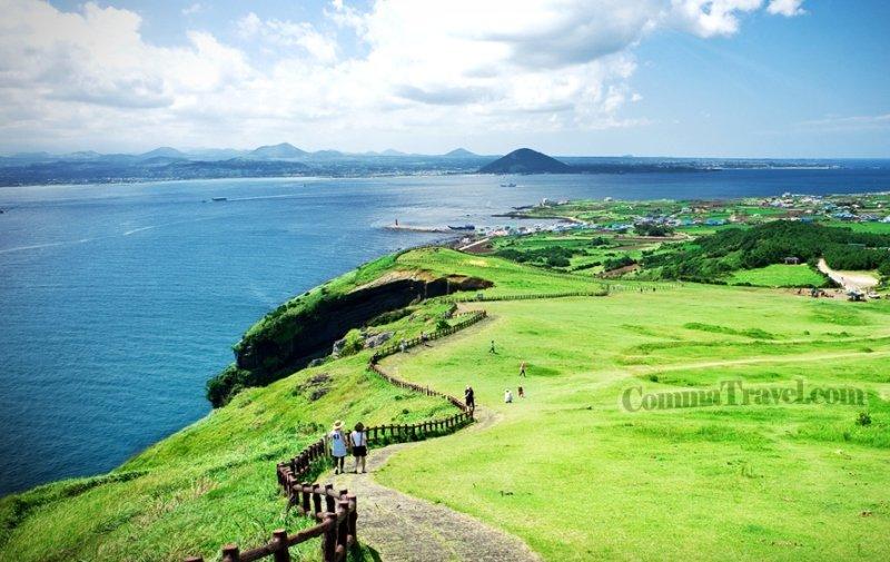 濟洲牛島。(圖片來源:韓國觀光局)
